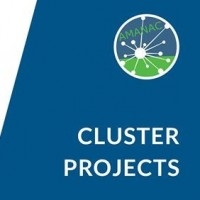 Have you heard about our cluster projects?